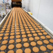Food Technology Company